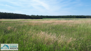 Działka Łabiszyn