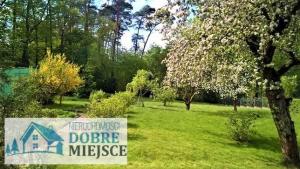 Działka Osielsko - Myślęcinek