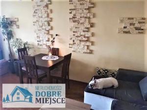 Mieszkanie Bydgoszcz - Osowa Góra 3-pokojowe